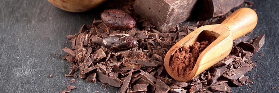 900x300_blog_cioccolato-crudo.jpg