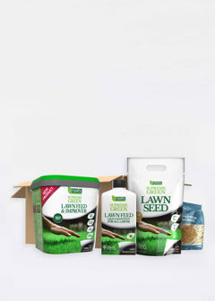 Empathy Summer Lawn Care Pack